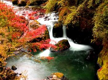 看红叶>城口大巴山彩叶,中国亢谷,千层河(川陕交界)双汽二日游